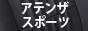 アテンザ スポーツ.jpg
